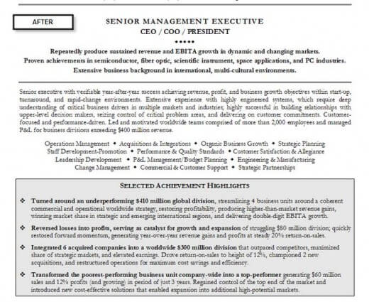 Professionally written resume example