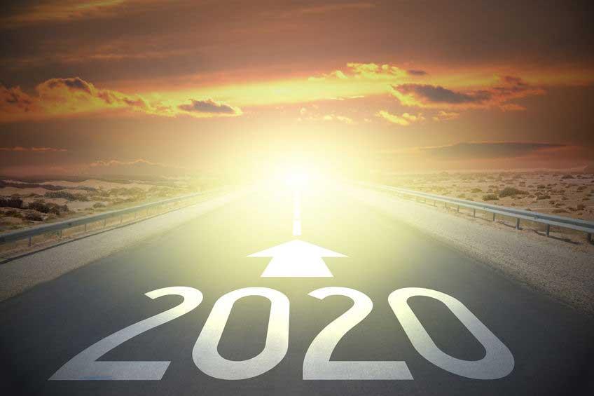2020 Job Search