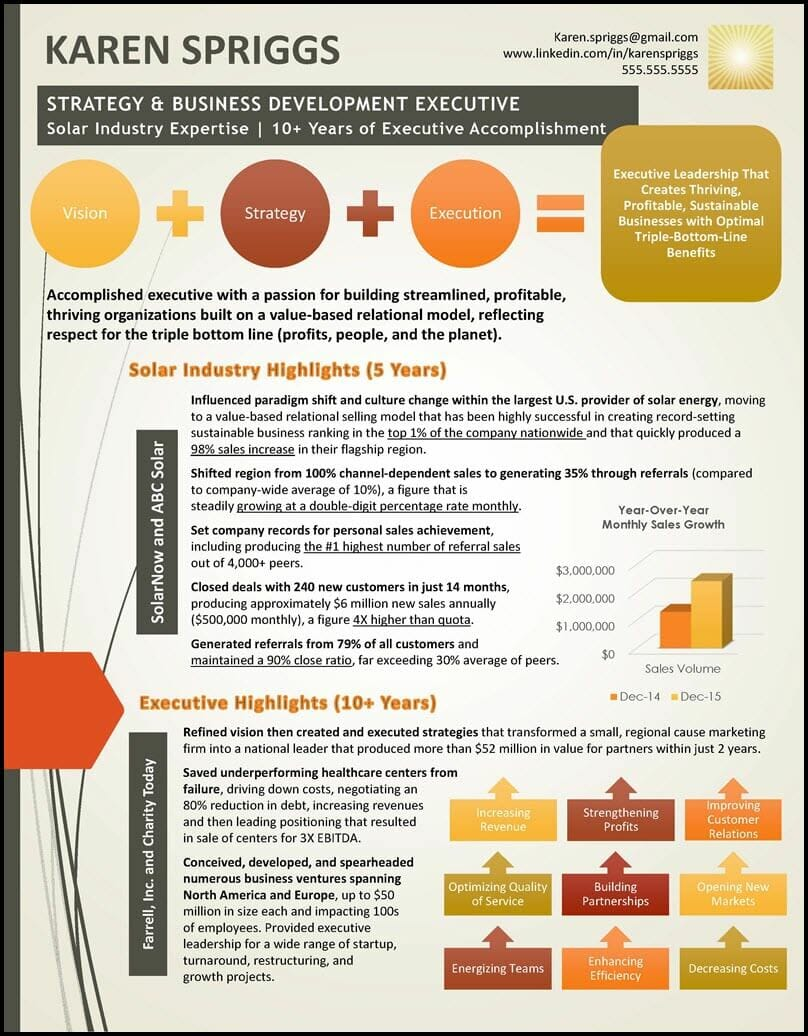 Infographic Resume Value Profile Example
