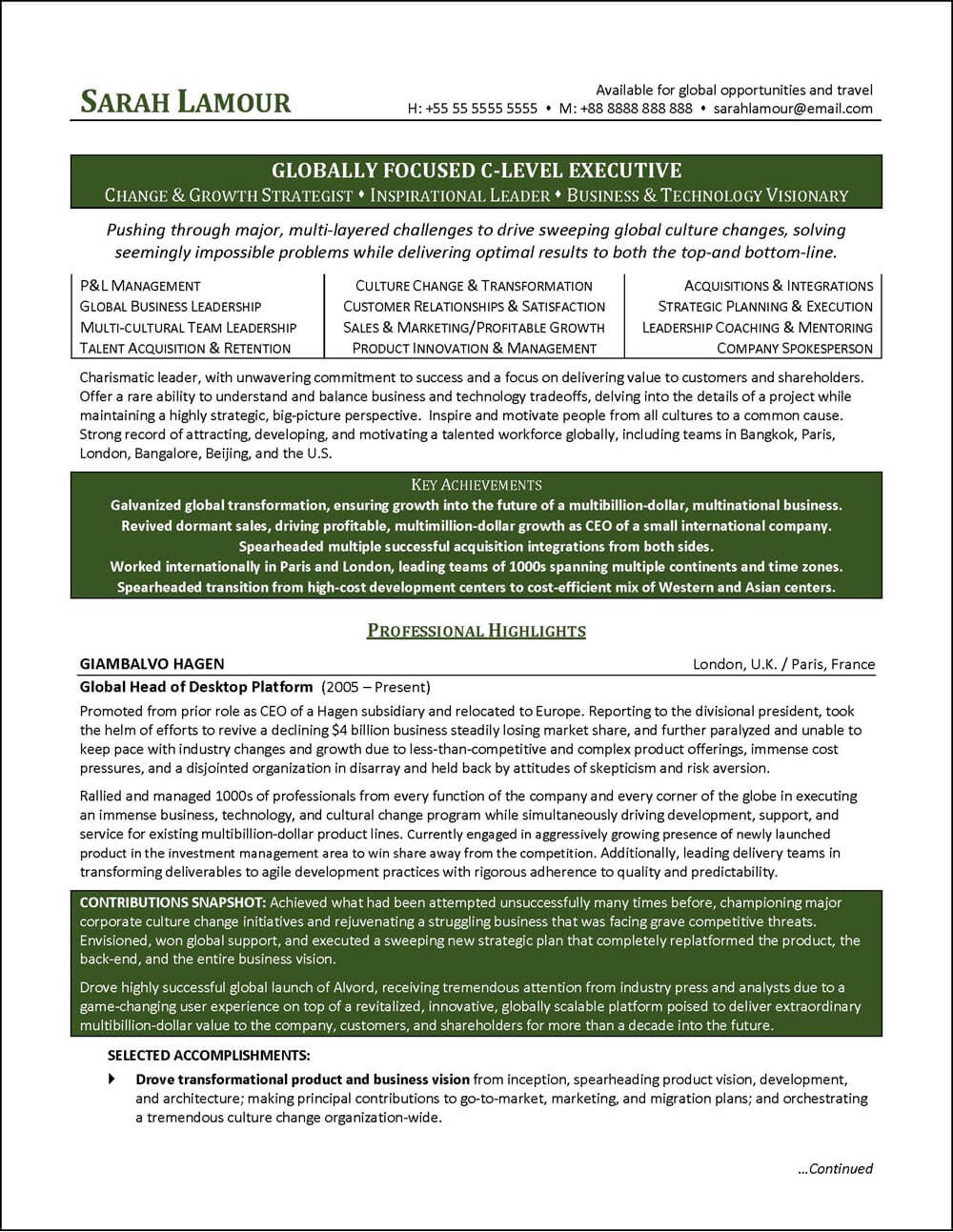 c level executive resume page 1 - Executive Resume