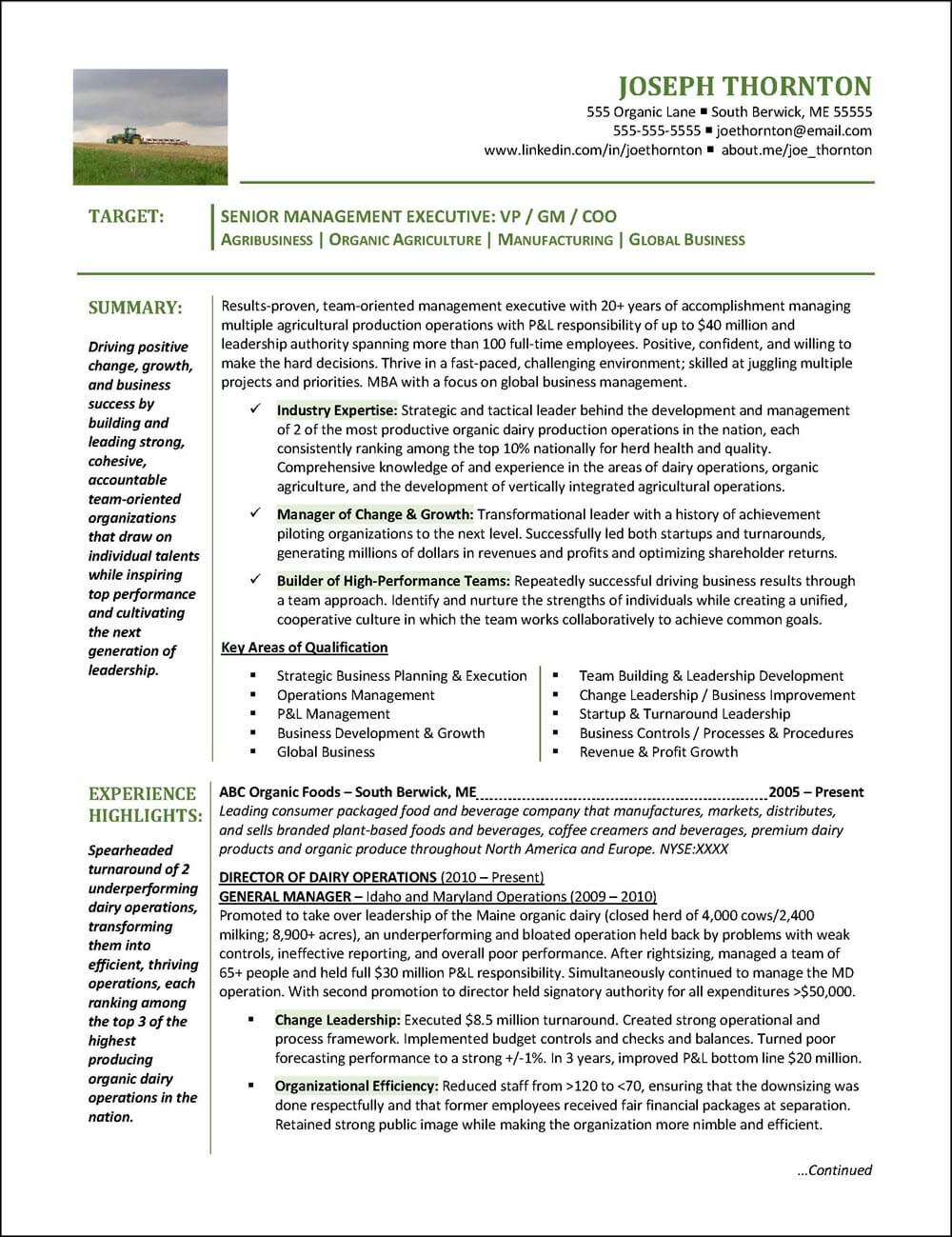 Example Senior Manager Resume page 1